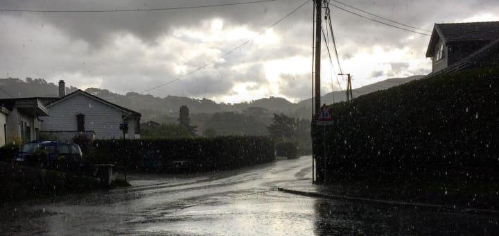 regn - rain