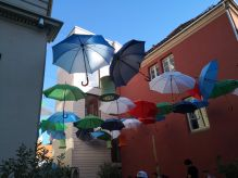 Wordless Wednesday – umbrellas