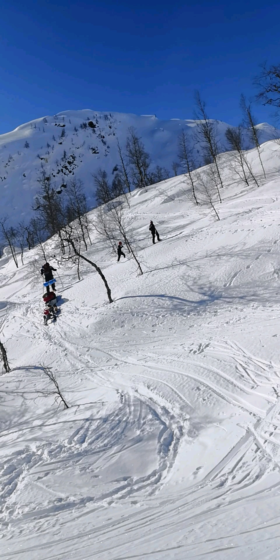 Skiing skitur