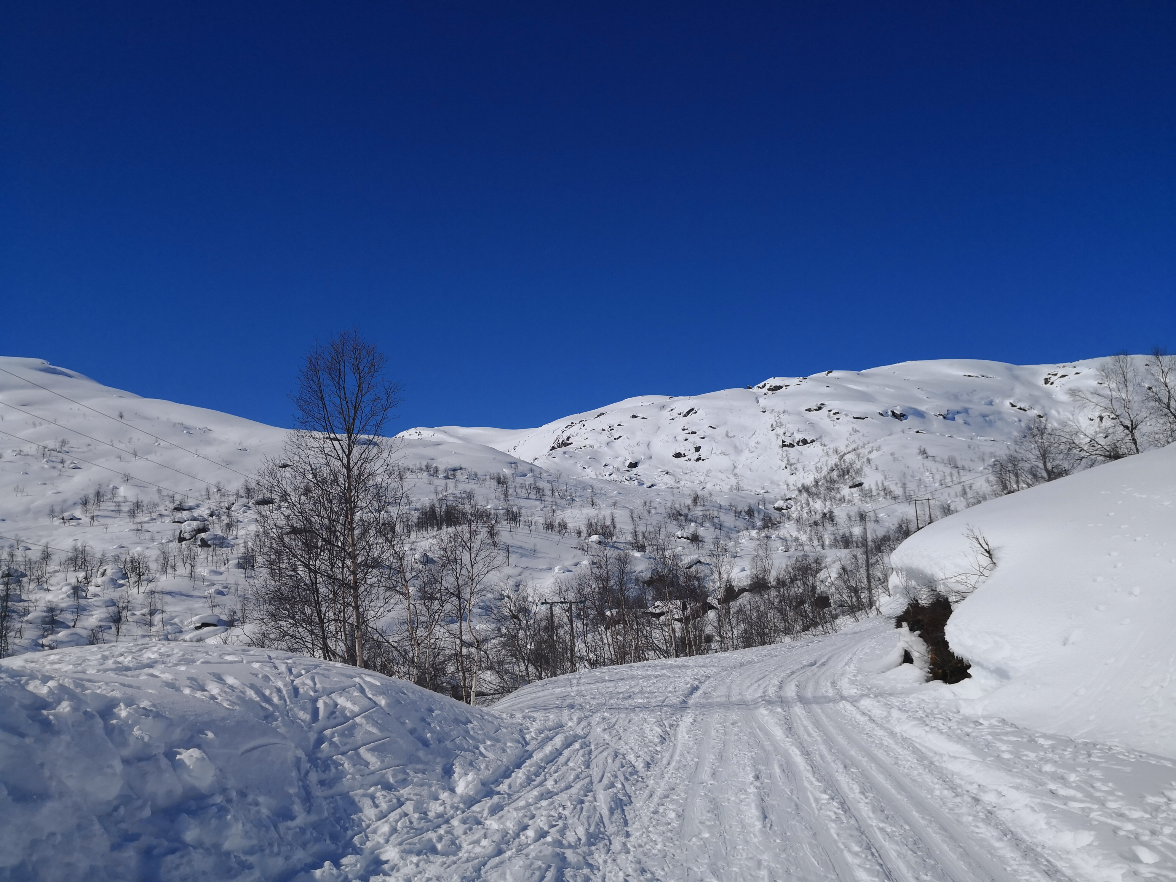 På ski opp til hytten