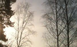 Incoming fog|Innkommende tåke
