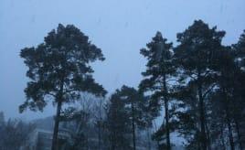 Finally more snow|Endelig mer snø