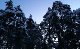 Skywatch Friday - minus 12 degrees|Skywatch fredag - minus 12 grader