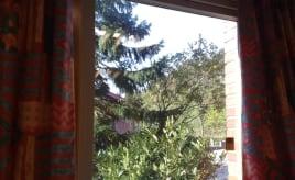 Wordless Wednesday - My office view|Ordløs onsdag - utsikt fra kontoret mitt