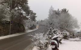 Wordless Wednessday - Snow is back Ordløs onsdag - Snøen er tilbake