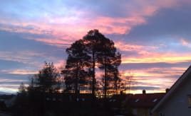 A beautiful morning|En nydelig morgen