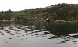 Gone fishing Fisketur