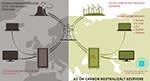 Carbon Free Server - Zöld szerver ! | Your Offset - Klikkelj a képre!