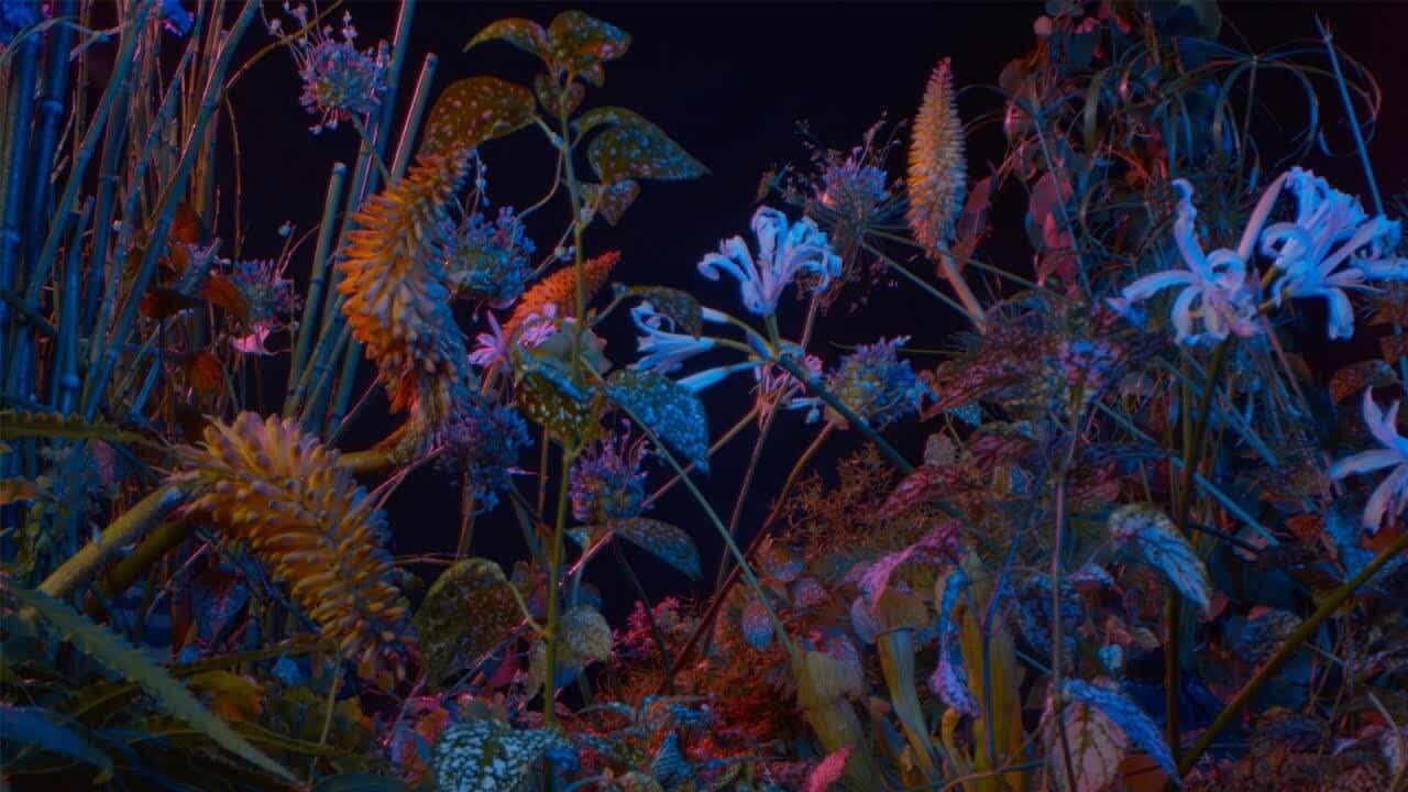 Floating Points - Last Bloom