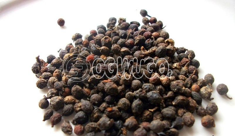 A cup of Uziza Seeds (Piper guineese)