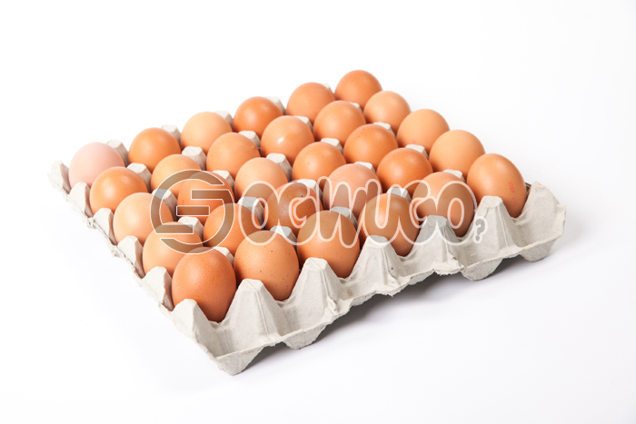 Fresh Big Eggs. Fresh eggs direct from the farm here for you at cheaper rates. can be delivered where ever you are.: unable to load image