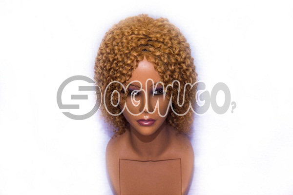 Carribbean Gold Human Hair Wig, hair length of 10 inches. order takes two working day to be delivered from when you place order