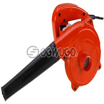 Lion Blower for Computer and Accessories.