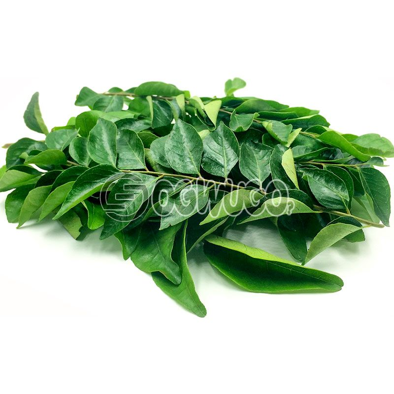 Very fresh Curry Leaves: unable to load image