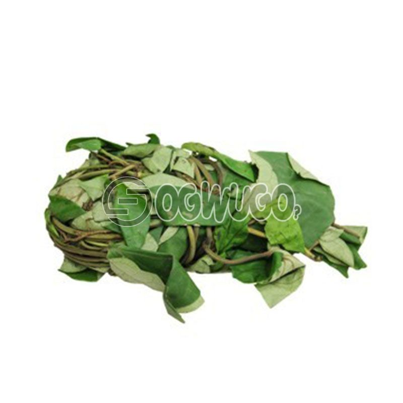 A bunch of Calabar Uziza Leaves