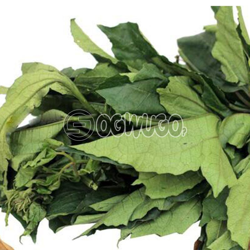 1 big fresh head of Ugu Leaves