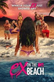 Ex on the Beach (US)