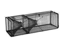 Leppefiskteine Netting Firkantet