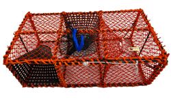 Krepseteine m/innerkalv og plastkalver