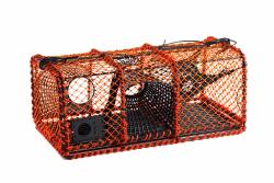 Skotteteine 12kg orange med plastkalver