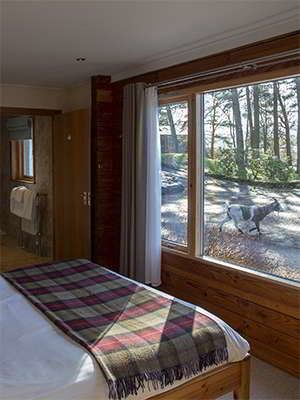 Old Pines bedroom and views