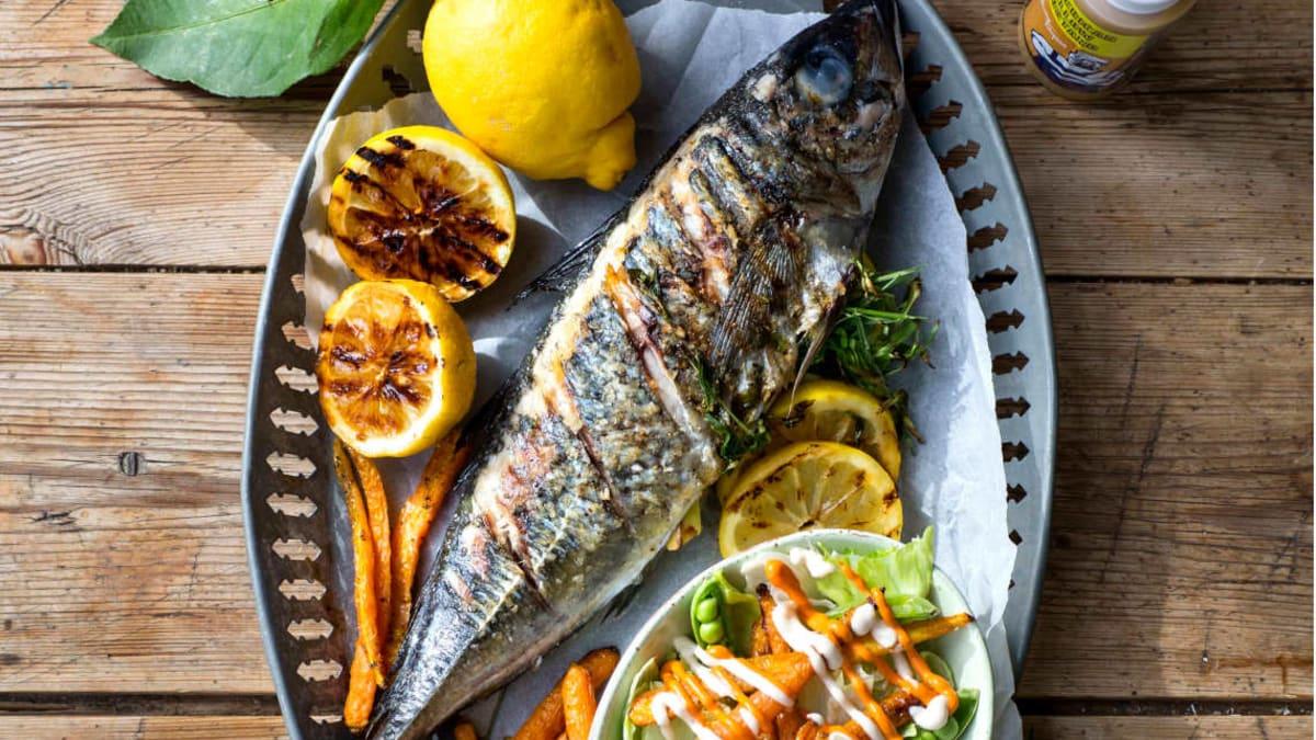 Grillet fisk med sommersalat