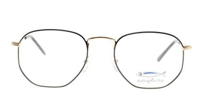 サラギーナ TIBERIO-310-V メガネを試着で購入