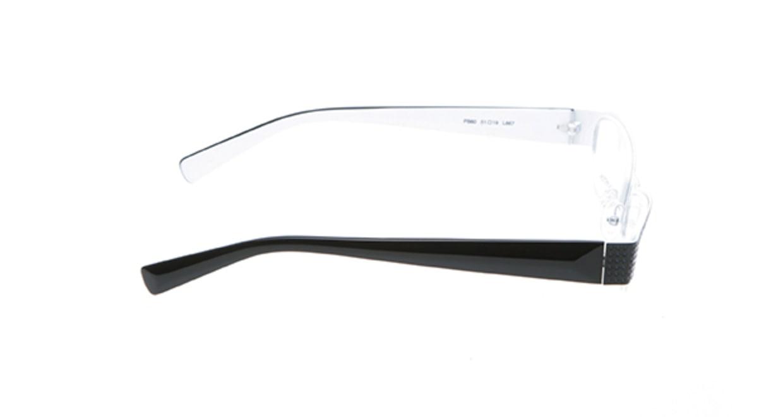 フランソワ パントン PB60-L667 [メタル/ハーフリム/フォックス]  1