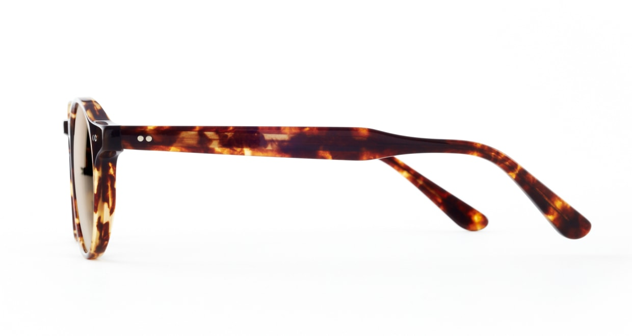 TYPE Garamond Light-Tortoise Sunglasses [ラウンド]  1