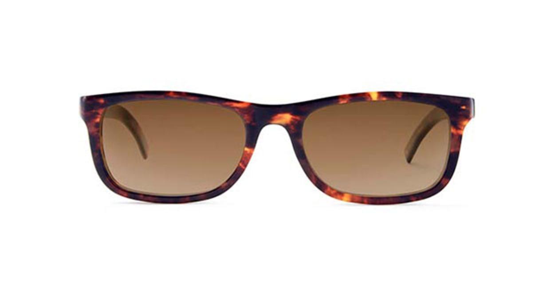 TYPE Din Bold Tortoise Sunglasses [鯖江産/ウェリントン]