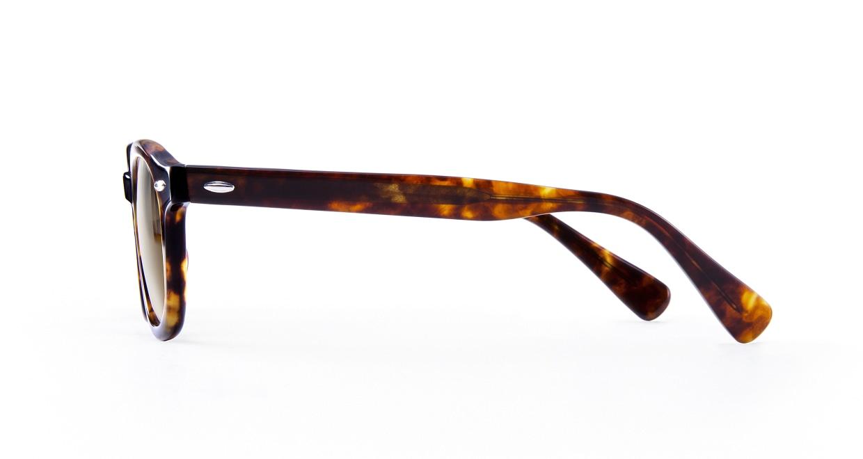 TYPE American Typewriter Bold-Tortoise Sunglasses [鯖江産/ボストン]  2