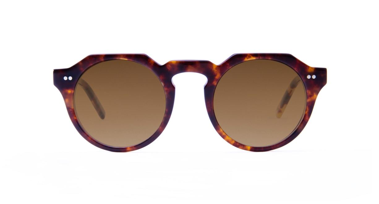 TYPE Serif Gothic Regular-Tortoise Sunglasses [鯖江産/ラウンド]