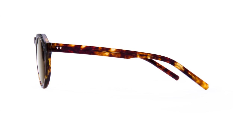 TYPE Serif Gothic Regular-Tortoise Sunglasses [鯖江産/ラウンド]  2