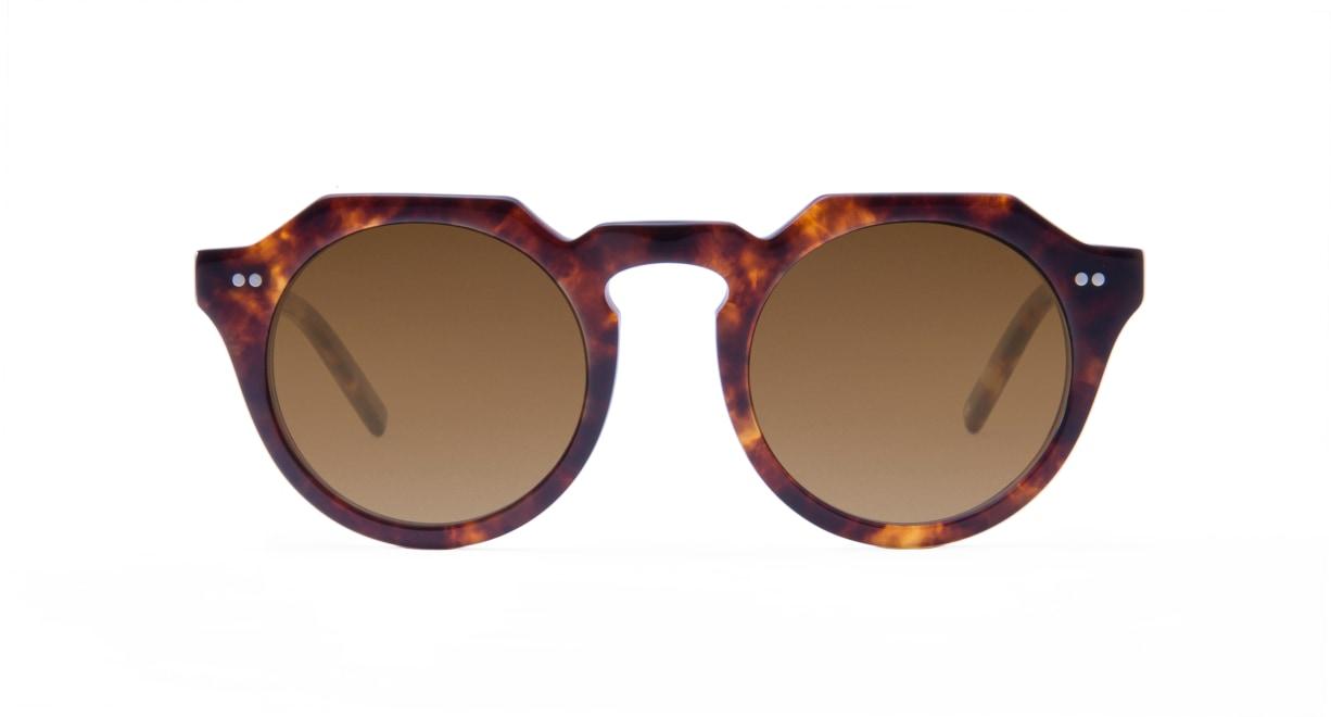 TYPE Serif Gothic Bold-Tortoise Sunglasses [鯖江産/ラウンド]