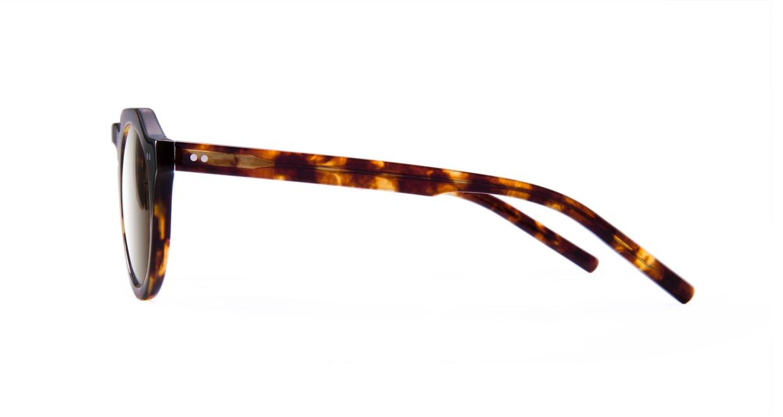 TYPE Serif Gothic Bold-Tortoise Sunglasses [鯖江産/ラウンド]  2