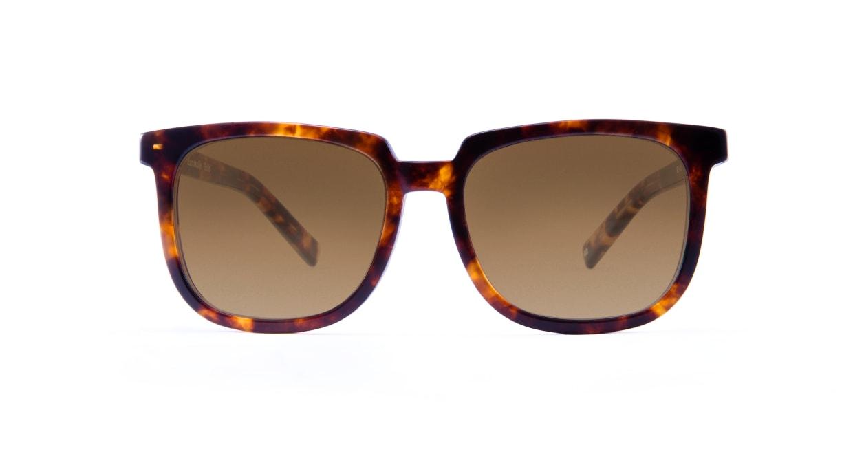 TYPE Eurostile Bold-Tortoise Sunglasses [鯖江産/スクエア]