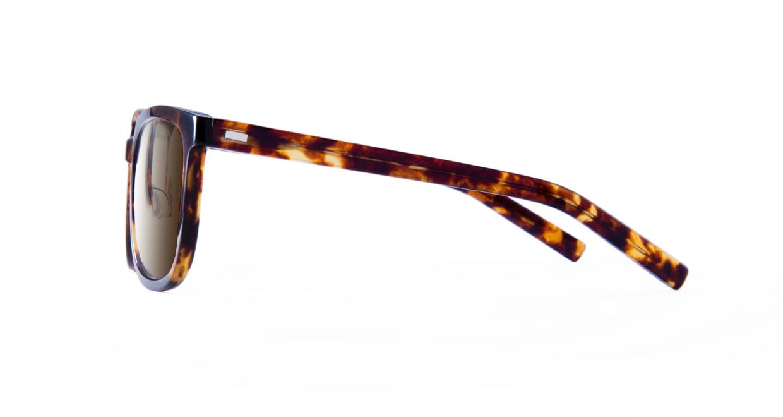 TYPE Eurostile Bold-Tortoise Sunglasses [鯖江産/スクエア]  2