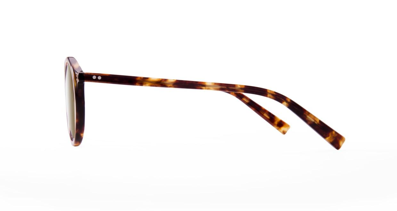 TYPE Optima Bold-Tortoise Sunglasses [鯖江産/ラウンド]  1