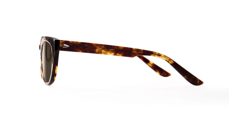 TYPE Friz Quadrata Bold-Tortoise Sunglasses [鯖江産/ウェリントン]  2