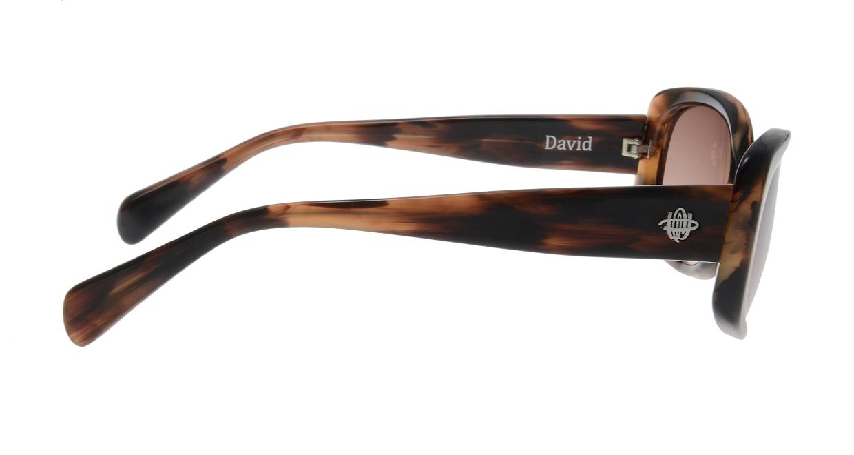 オウル opticwarlock David EP1201-3-BROWN [スクエア]  1