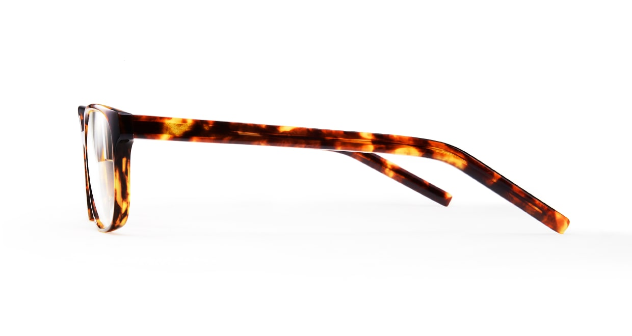 TYPE Univers Light-Tortoise [鯖江産/ウェリントン/べっ甲柄]  2