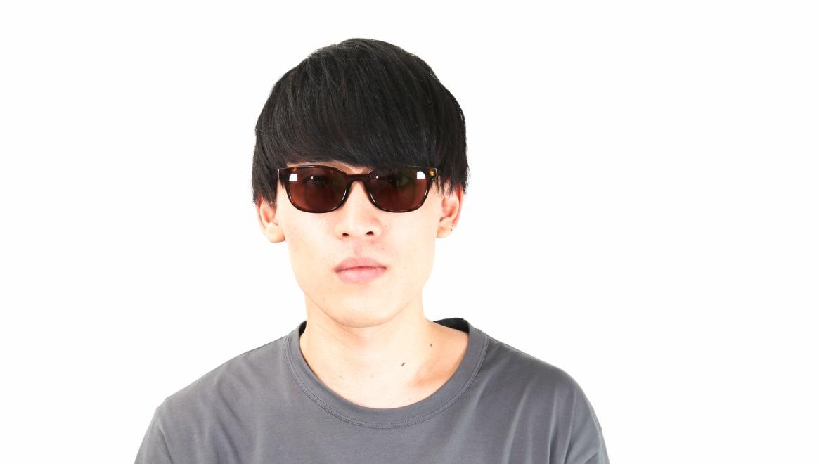 TYPE Univers Regular-Tortoise Sunglasses [鯖江産/ウェリントン]  3