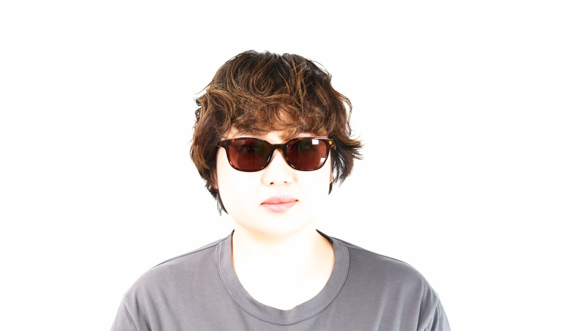 TYPE Univers Regular-Tortoise Sunglasses [鯖江産/ウェリントン]  5