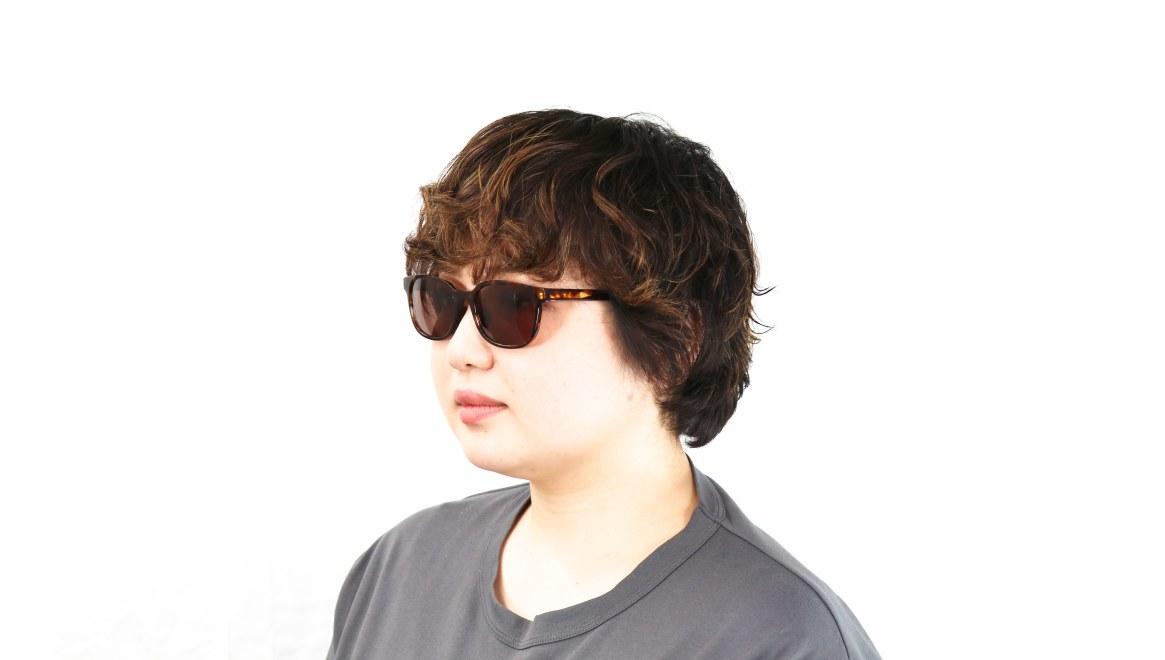 TYPE Univers Regular-Tortoise Sunglasses [鯖江産/ウェリントン]  6