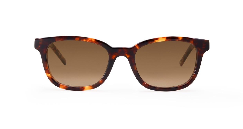 TYPE Univers Bold-Tortoise Sunglasses [鯖江産/ウェリントン]