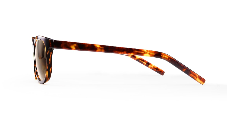 TYPE Univers Bold-Tortoise Sunglasses [鯖江産/ウェリントン]  2
