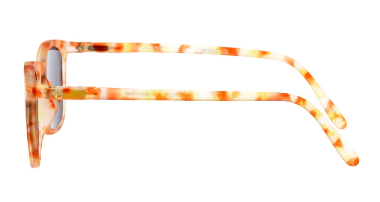 イジピジ +0.0#E Sun-Yellow Tortoise [ウェリントン]  2