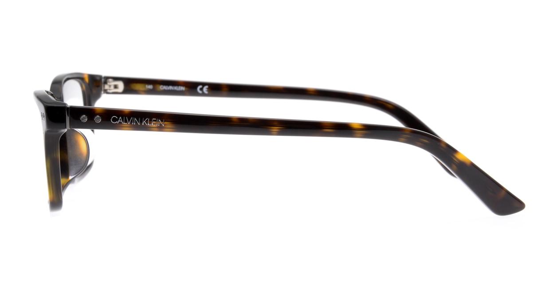 カルバンクライン CK18526A-235-54 [ウェリントン/べっ甲柄]  2