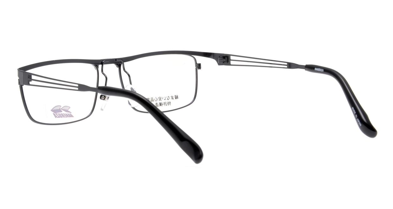 ハネルザHN-1043-BK-54 [メタル/鯖江産/ウェリントン]  3
