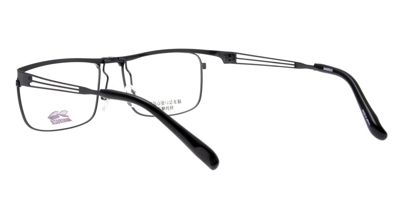 ハネルザHN-1044-BK-54 [メタル/鯖江産/ウェリントン]  3